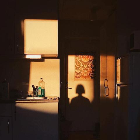 Shadows_006 (_taxcollection).jpg