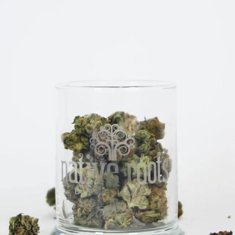 Cannabis_011 (_nativerootsdispo).mp4