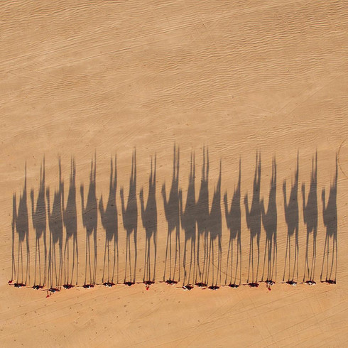 Shadows_010 (_minimalism).jpg
