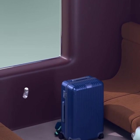 Luggage_085