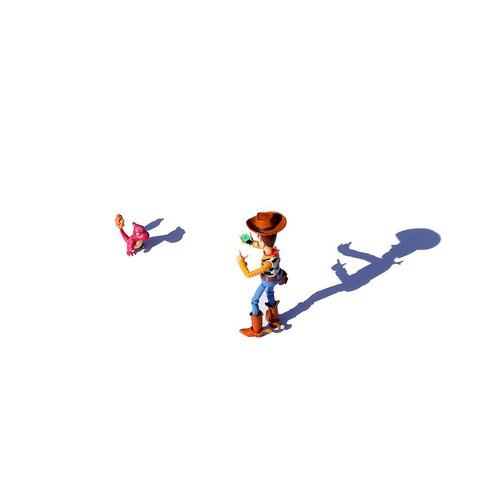 Shadows_028 (_dcerejo).jpg