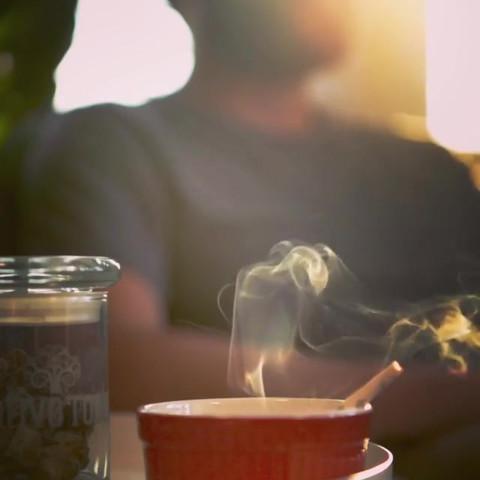 Cannabis_012 (_nativerootsdispo).mp4