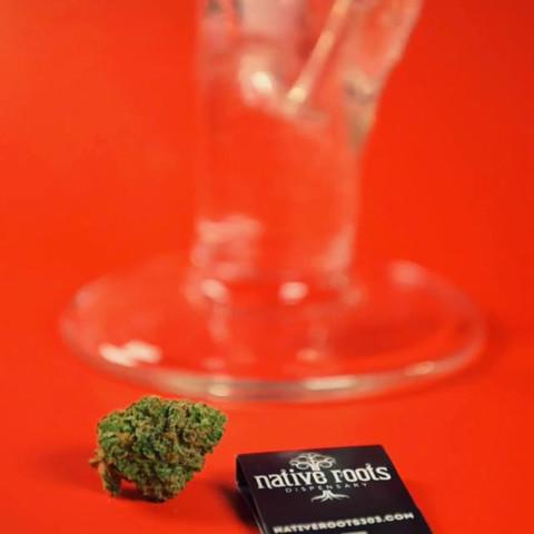 Cannabis_014 (_nativerootsdispo).mp4