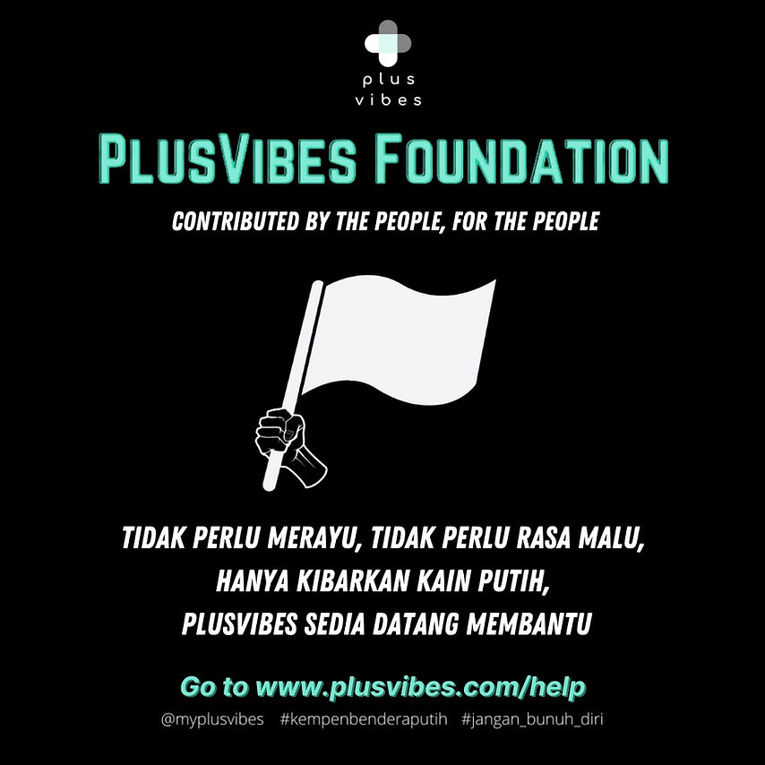 Plusvibes foundation