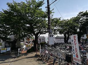 駅前の桜.jpg