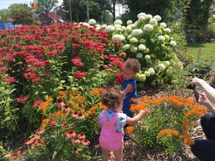 Family Fun day at the Peace Garden
