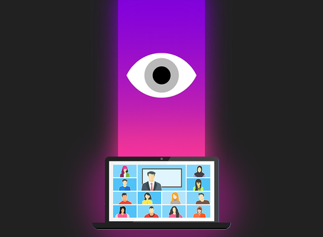 An Introduction to Video-Calling and Privacy.
