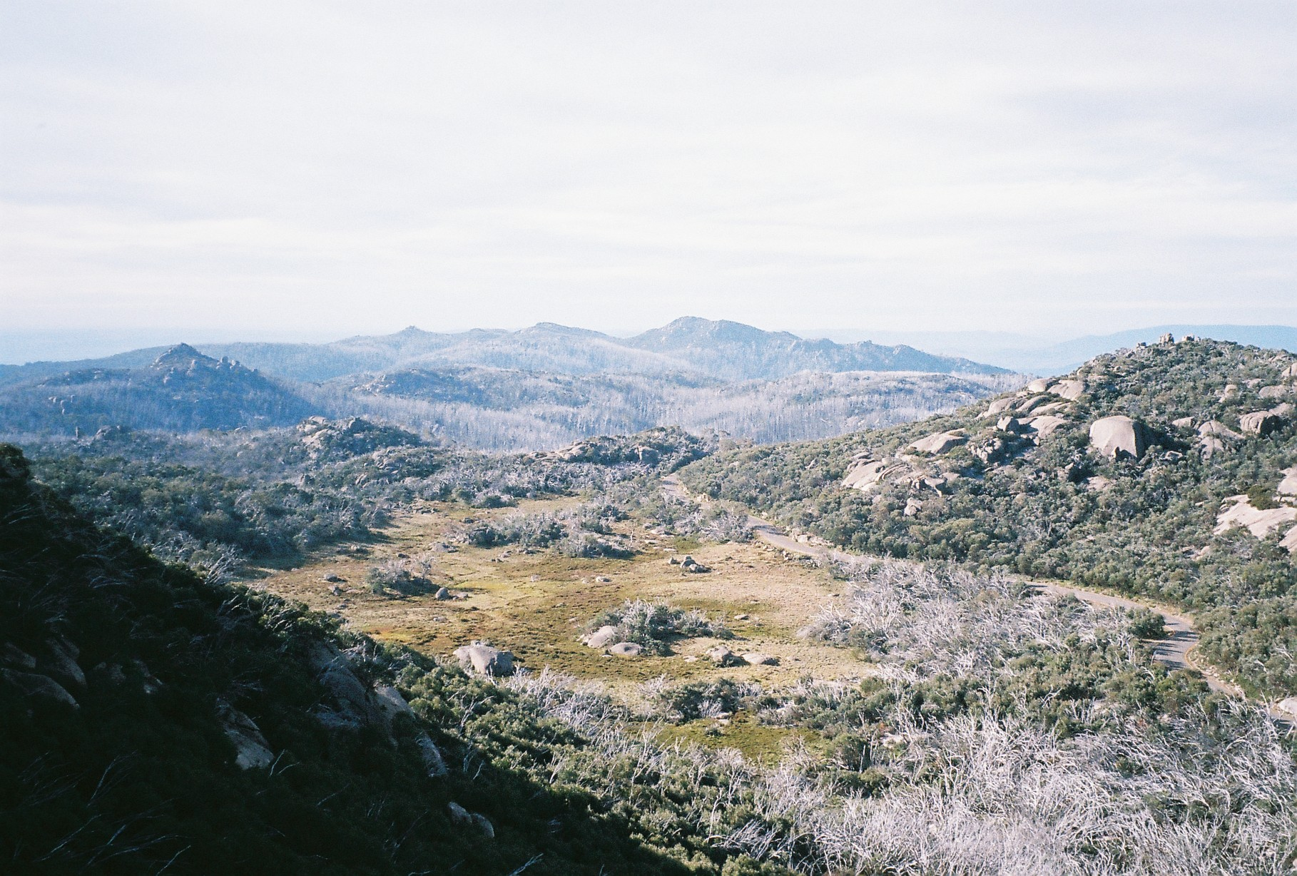 Mt Buffalo, Australia, 35 mm kodak