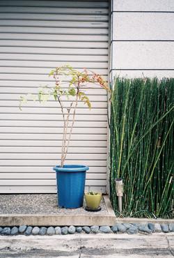 Shinjuku, Japan, 35 mm kodak