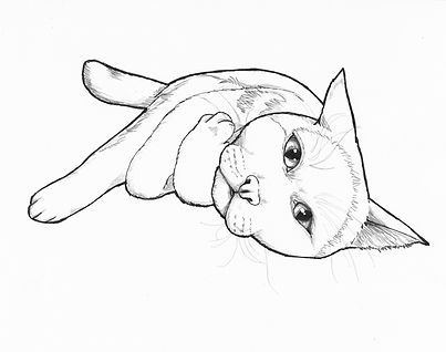 _NOT FOR SALE Simon SPCA Coloring Page.j