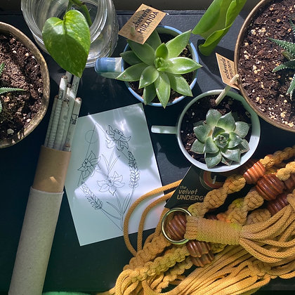 The plant mum | Mother's Day gift pack