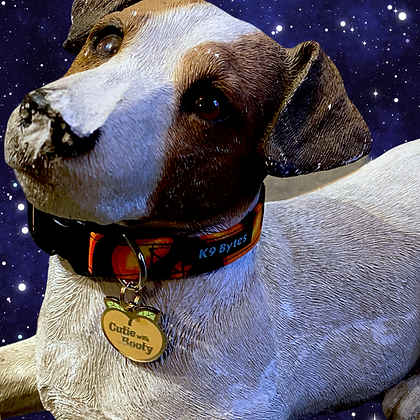 Pet jewelry | by Two Tails pet company