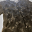 Thumbnail: Racey lacey   Vintage lace button up
