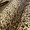 Thumbnail: Meow   fleece animal print button up
