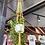 Thumbnail: The Hang gang macrame plant hanger