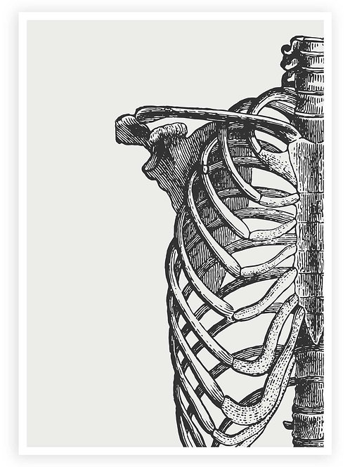 Anatomical Ribcage Art. Minimalist PRINTABLE WALL ART in Goth, Grunge, Alternative aesthetic.