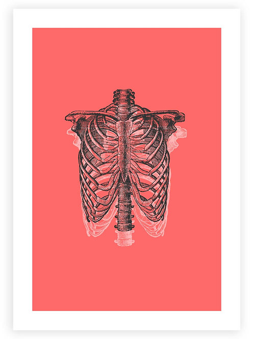 Anatomical Ribcage Printable Wall Art. Instant Download. Pastel Goth and Emo aesthetic.