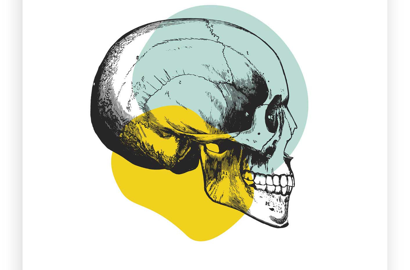 Skull Wall Art | Yellow & Pastel Blue