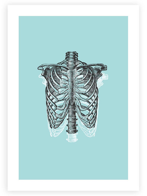 Anatomical Ribcage Printable Wall Art. Instant Download. Rockabilly, Punk and Emo aesthetic.