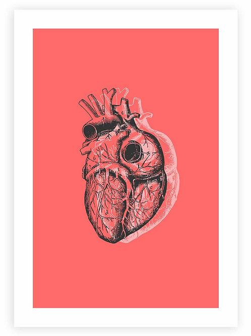 Anatomical Heart PRINTABLE WALL ART in red. Modern, minimalistic Pastel Goth &Rockabillyhome decor
