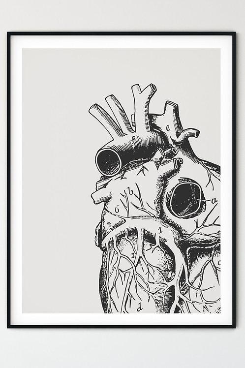 Anatomical Heart, Art Print, Gothic Home Decor, Pastel Goth, Pastel Goth Art, Goth Decor, Macabre Art, Halloween Decor