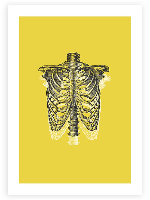 Anatomical Ribcage Printable Wall Art. Pastel Goth Art and modern Gothic Decor. Rockabilly, Punk and Emo aesthetic