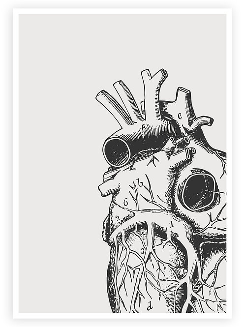 Large Print Anatomical Heart Wall Art. Minimalist PRINTABLE WALL ART in Goth, Rockabilly, Punk style for your home.