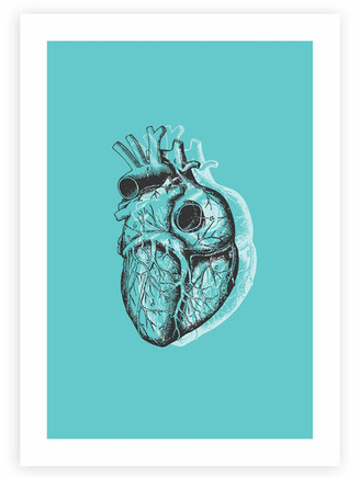 Anatomical Heart • Wall Art