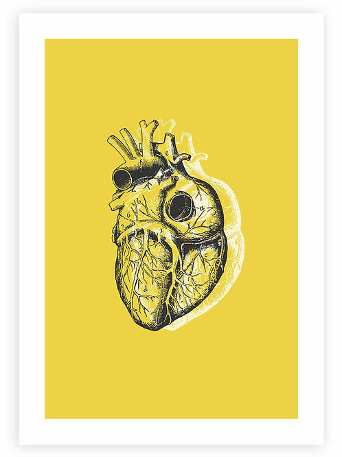 Anatomical Heart Art. Modern, minimalistic Goth, Rockabilly, Pastel Goth home decor