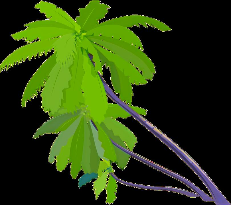 palm-trees-33334_960_720_edited_edited_e