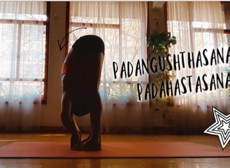 Padangushthasana y Padahastasana: técnica, armado, beneficios