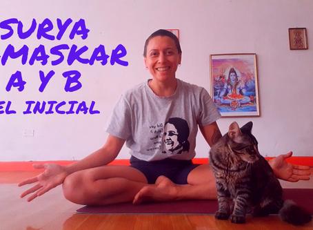Surya Namaskar A y B