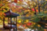 3820145201700059k_Autumn of Gwallamji Po