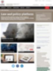 icrc website 2.JPG