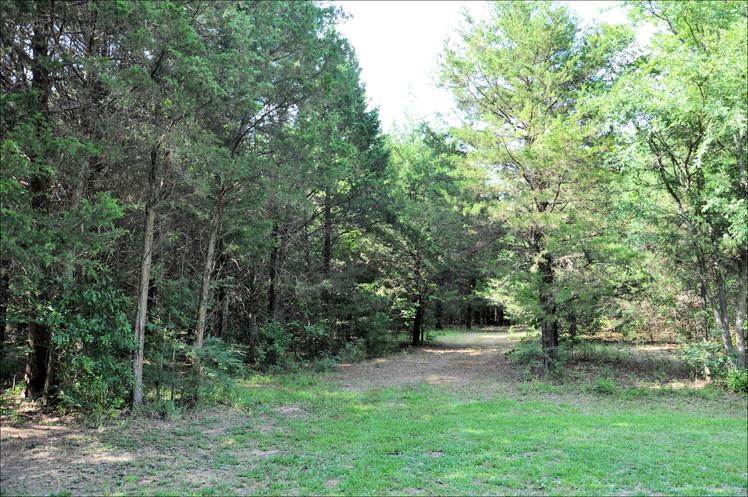 Trail - 064.jpg