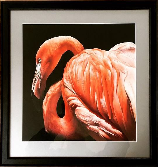 Flamingo original drawing Jan 2020.jpg