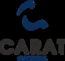 Logo%20Carat%20Capital_edited.png