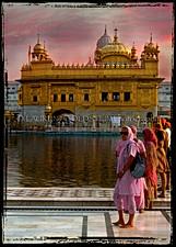 Back to Amritsar
