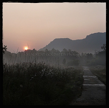 Sunrise at Bandhavgarh