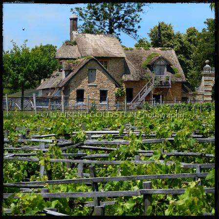 Marie-Antoinette's Farm