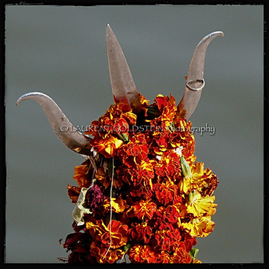Shiva's Trishul