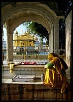 Devotion along the Sarovar