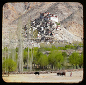 Returning To Ladakh Time And Again