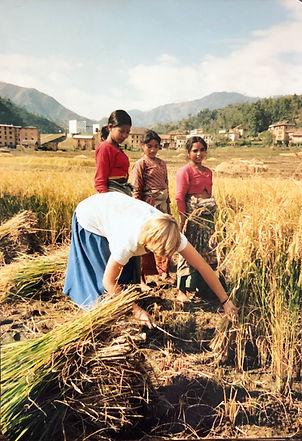 Nepal IMG_7470.jpeg