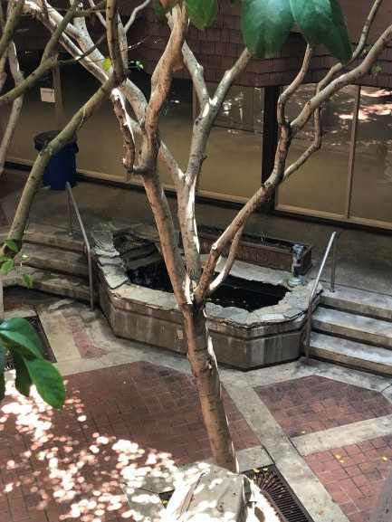 Waterfountain in Courtyard