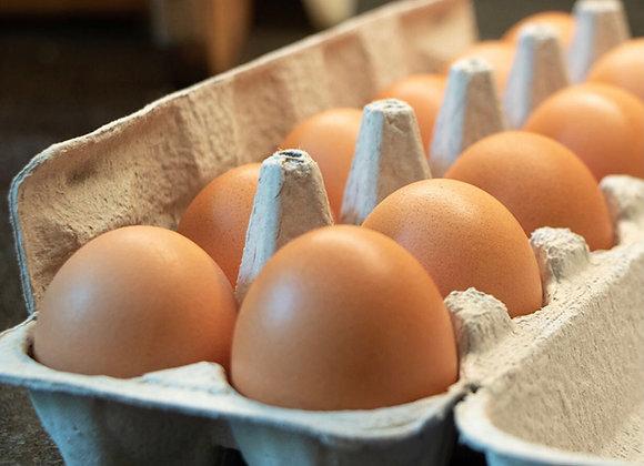 Farm Fresh Eggs (12 pack)