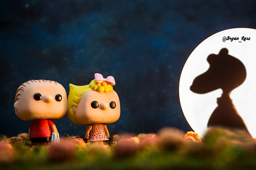 Snoopy, Charlie & Sally Brown in pumpkin patch