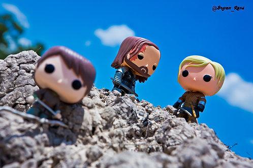 The Hound vs Brienne of Tarth