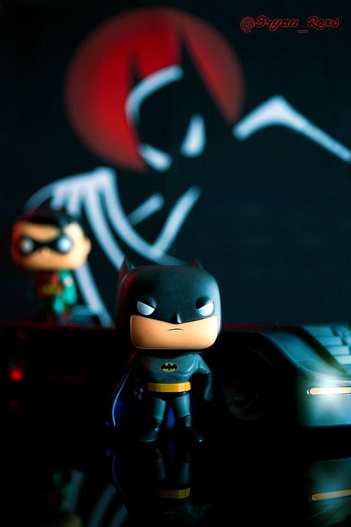 Animated Series Batman & Robin