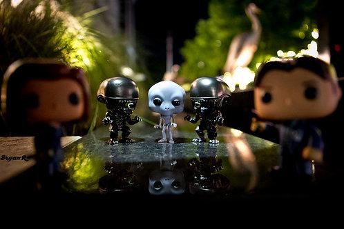 Scully & Mulder Alien Investigation